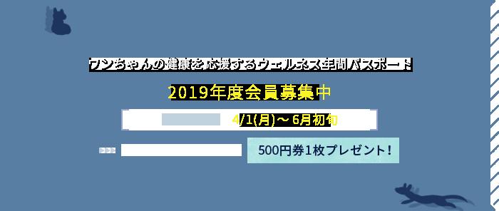 2018年度会員募集中